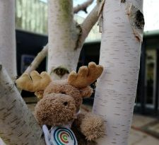 Digital Learning's soft toy moose.