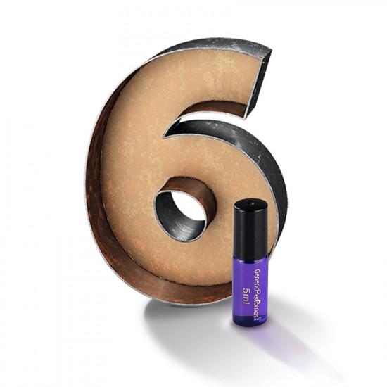 Perfume Oil Sample Pack 6 pcs x 5 ml 0.169 oz