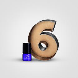 Perfume Oil Sample Pack 6 pcs x 2.5 ml