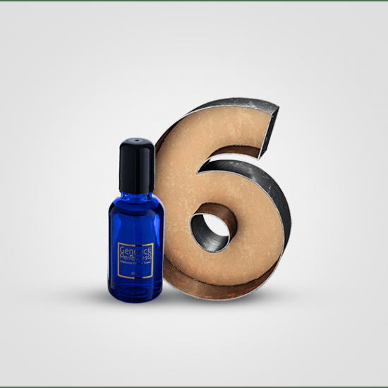 Perfume Oil Sample Pack 6 pcs x 30 ML