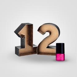 Perfume Oil Sample Pack 12 pcs x 2.5 ml