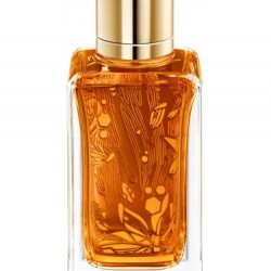 Lancome - Oud Ambroisie for Unisex