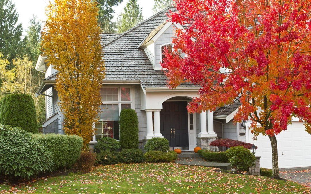 It's Officially Fall – What Are the Most Useful Fall Home Improvements For You to Make this Season?