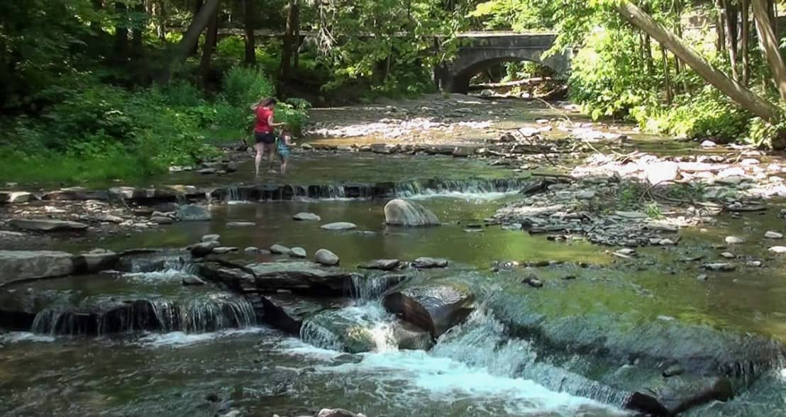 Restoring our River