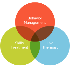 behavior management image