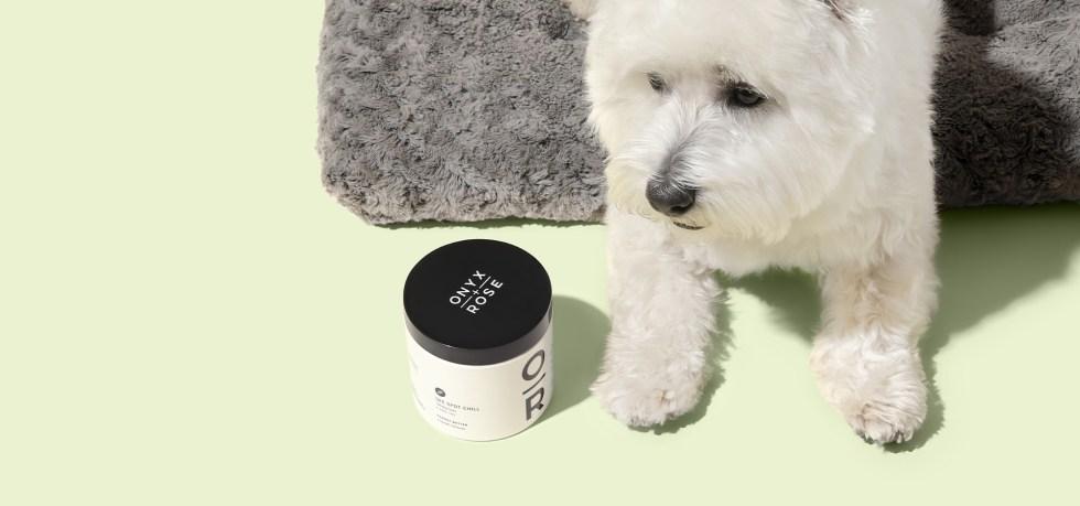 SeeSpotChill_Peanut Butter_CBD Dog Treats_ProductPage
