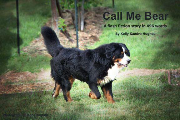 Call Me Bear - A Flash Fiction Story in 496 Words - Kelly