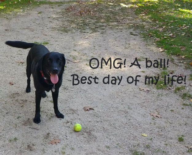 a-ball