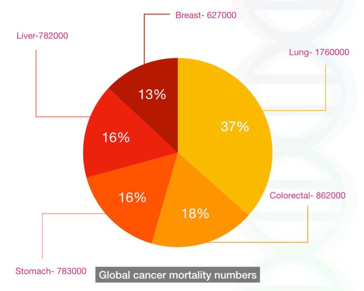 The graphical representation of mortality rate due to cancer globally.