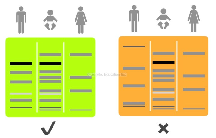 The image of paternity DNA testing.