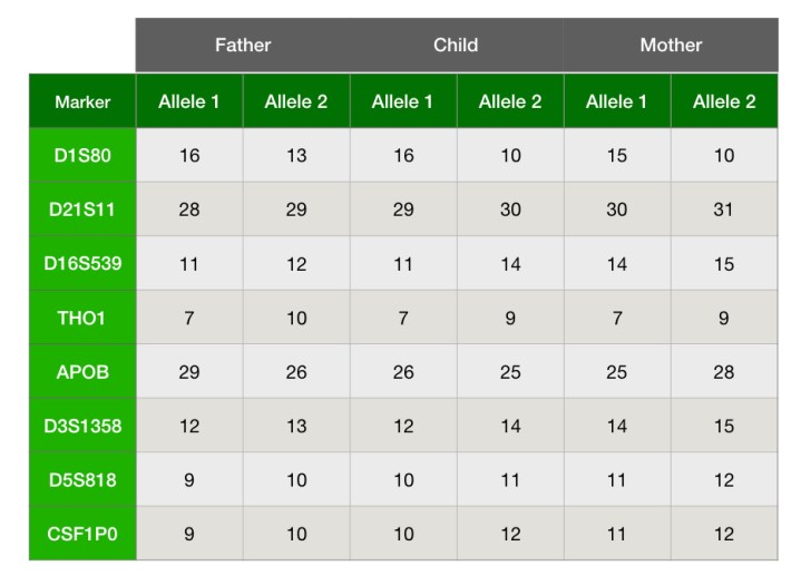 A typical result table of the different markers for the home DNA test.