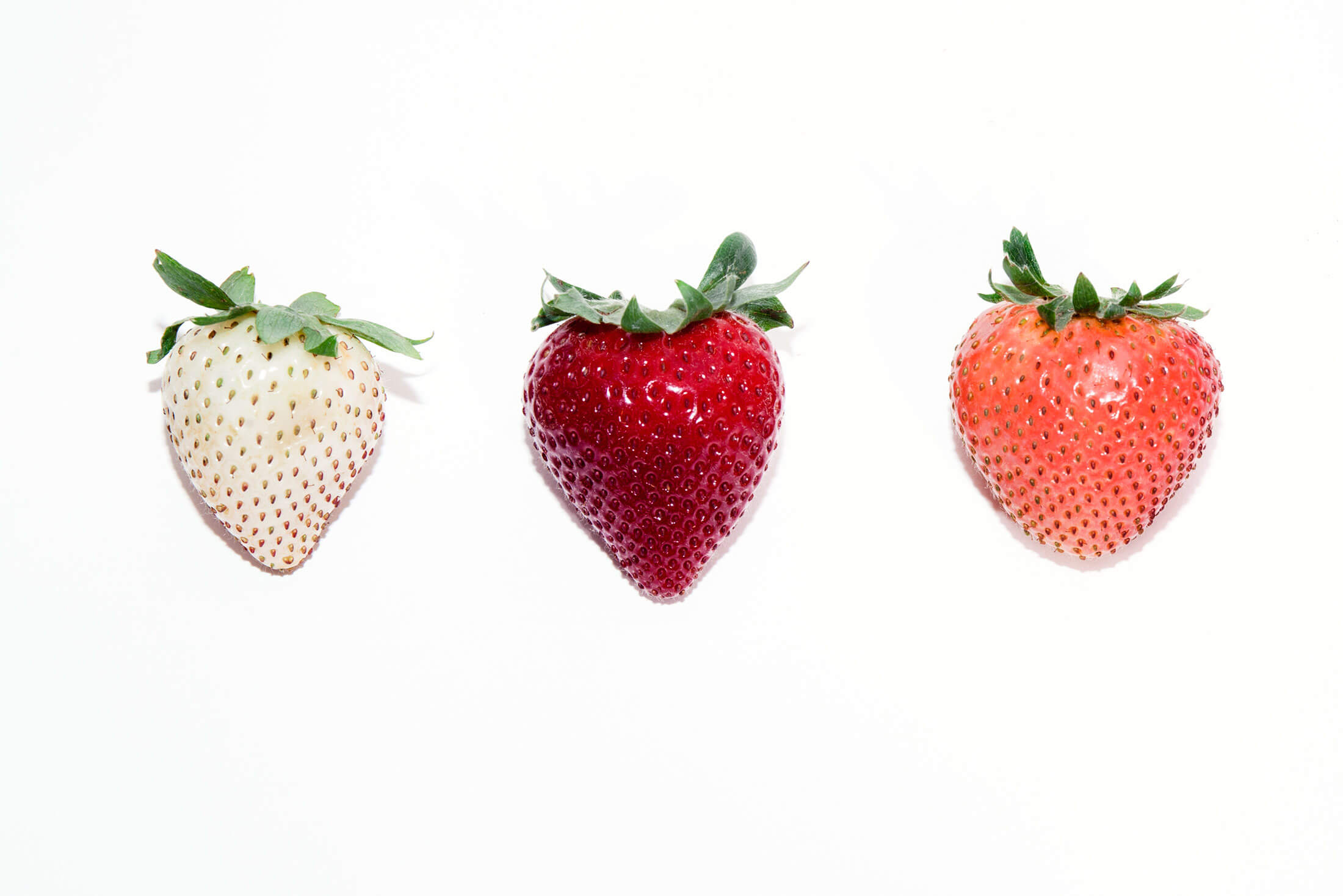 White Strawberries How Genetics Is Creating The Berry Of