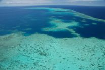 Great Barrier Reef 8