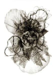 Metamorphisis 6 - Graphite on Paper