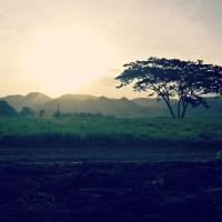 Solitude & Wayfaring Men