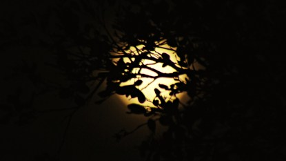 moon june 1 019 tu