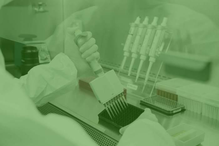 scientist working in cannabis ingredient laboratory