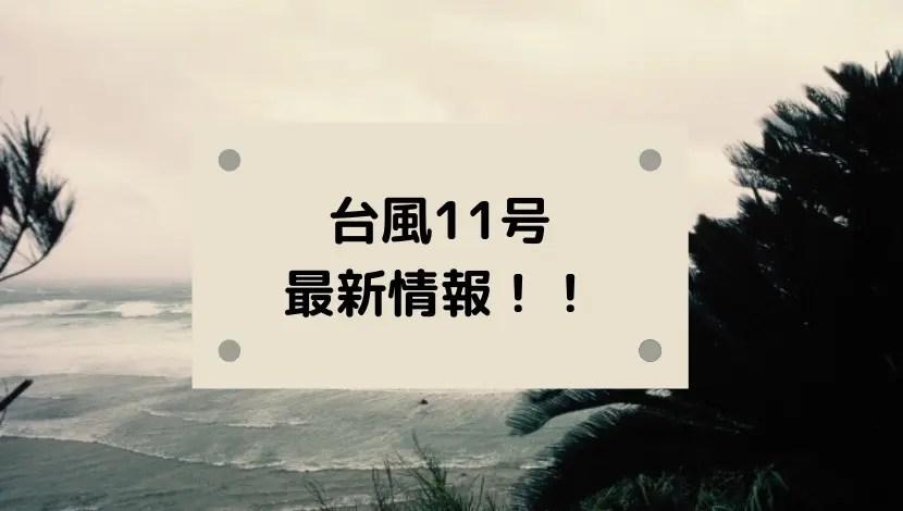 台風11号2020たまごの進路予想!米軍・ヨーロッパの予報図と日本接近はいつ?