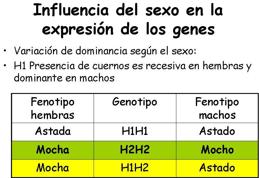 influenciados-por-el-sexo1. Como se expresan los genes bajo influencia hormonal
