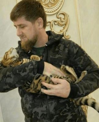 Il leader ceceno con il suo gatto