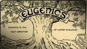 eugenics-tree