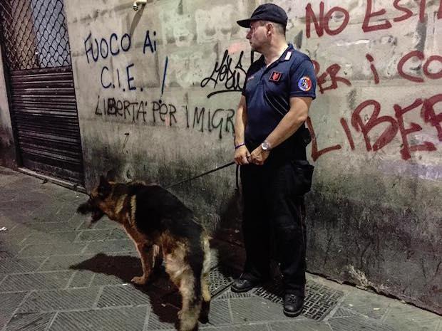 cane carabinieri cinofila
