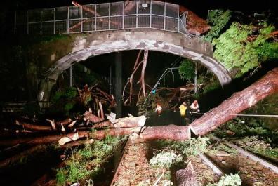 albero caduto sulla ferrovia maltempo