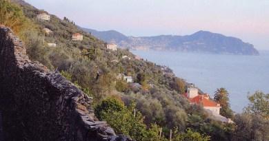 Due storie e una collina, Euroflora parte da Sant'Ilario: il Marsano e la giornata di studio sulle piante aromatiche e medicinali