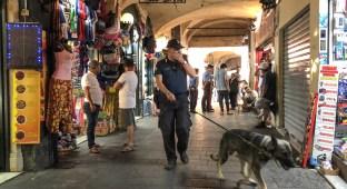 bono, cane antidroga, carabinieri centro storico