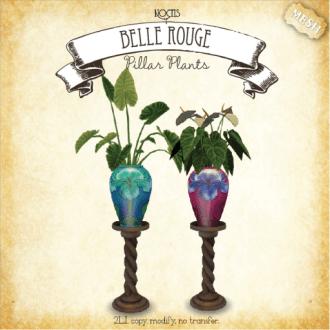 Noctis - Pillar Plants