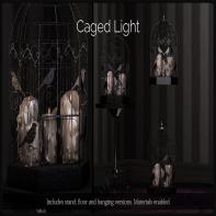 _Dilly Dolls_ Caged Light Black