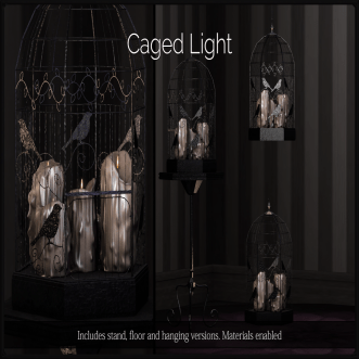 _Dilly Dolls_ Caged Light Black