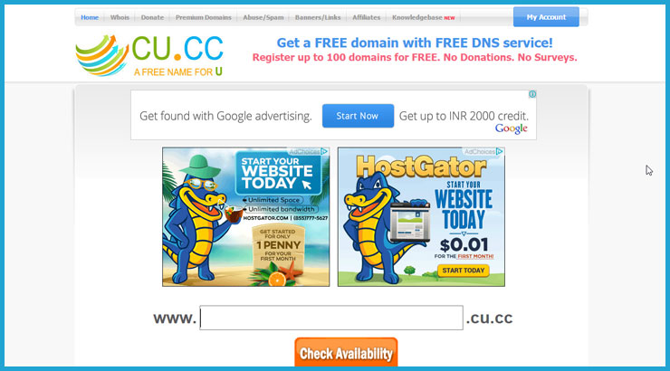 Free Domain with DNS