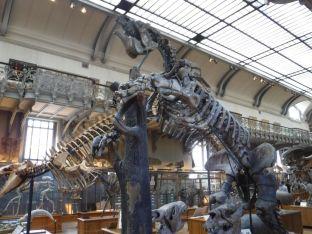 PG.Paris.Natural History Museum019