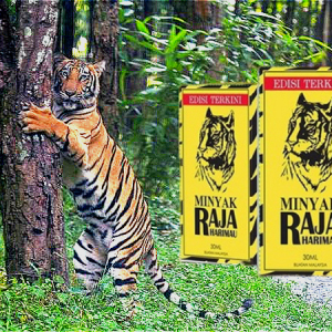 Minyak Raja Harimau 虎王免按摩增长加粗精油 RM220