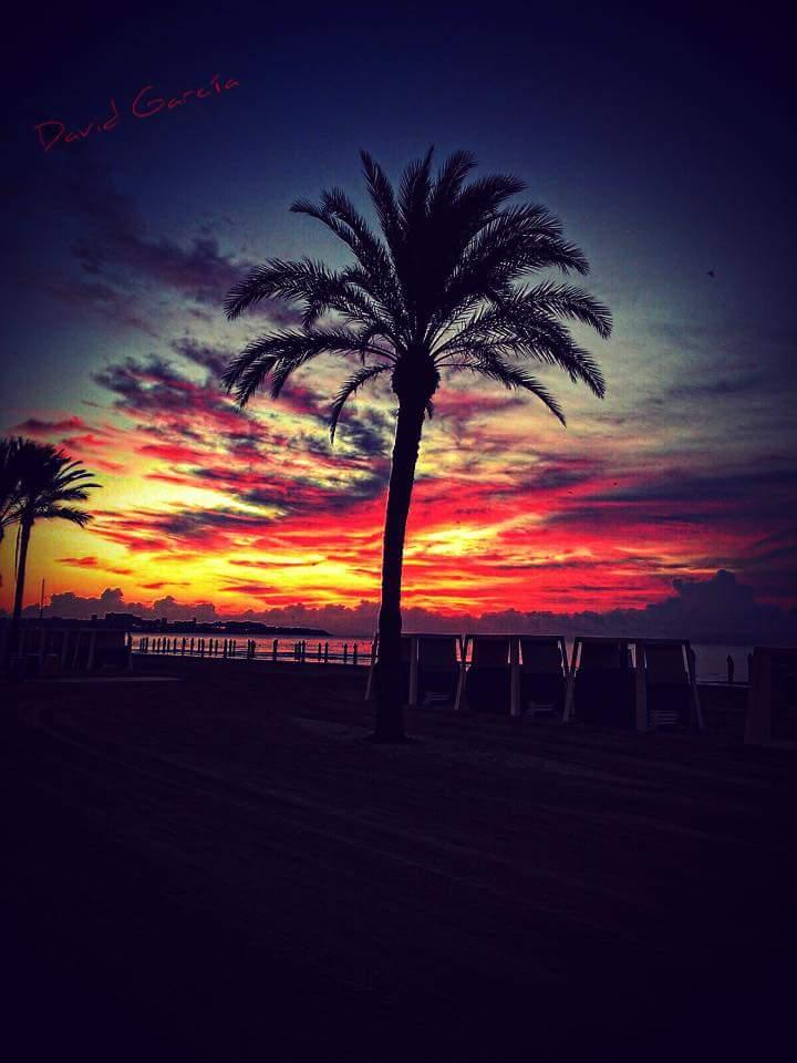 Playa-Postiguet-gentedealicante.es