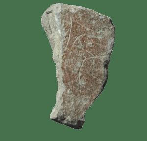 Plaqueta grabada del Tossal de la Roca