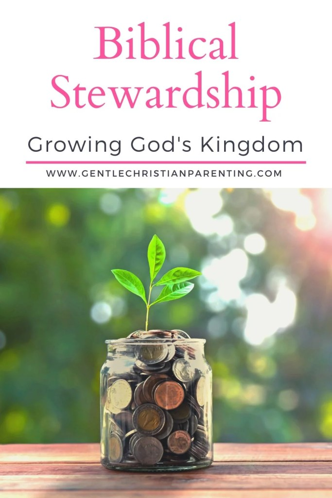 image of biblical stewardship - growing God's kingdom plant & money