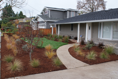 Drought tolerant front yard drought tolerant landscape for Drought tolerant yard