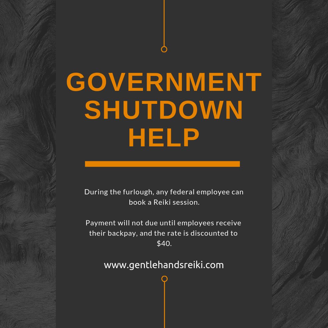 government shutdown pricing
