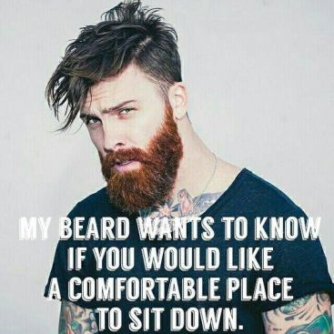 my-beard-wants-to-know-if-you-would-like-a-comfortable-place-to-sit-down-beard-memes
