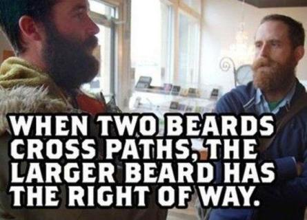 when-two-beards-cross-paths-the-larger-beard-has-the-right-of-way-meme