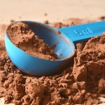 Understanding Protein Turnover and Leucine