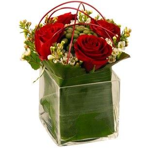 offrir fleurs saint valentin rose rouge