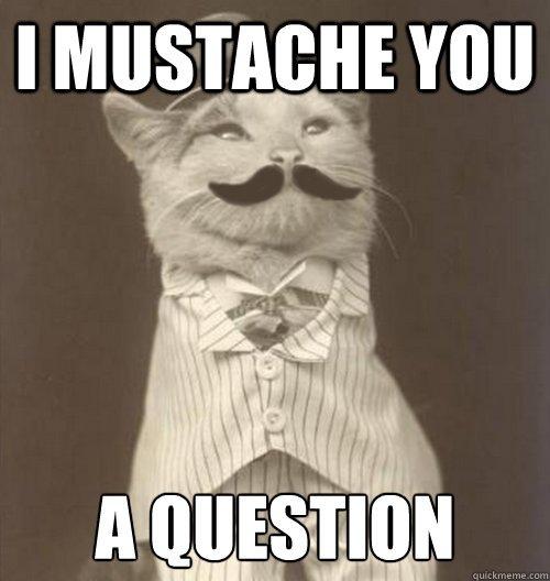 Mustache Meme Question You