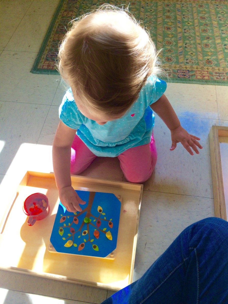 Montessori vs. Traditional Education: A Gentle Approach