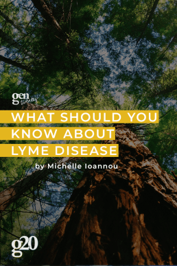 What You Should Know About Lyme Disease