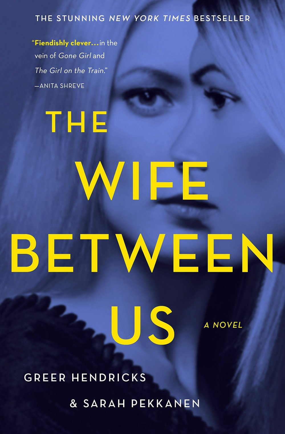 6. The Wife Between Us by Greer Hendricks and Sarah Pekkanen (2018)
