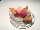 Blood peach sorbet with nougatine and freshly baked madeleine