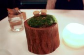 Mushroom Macaroon
